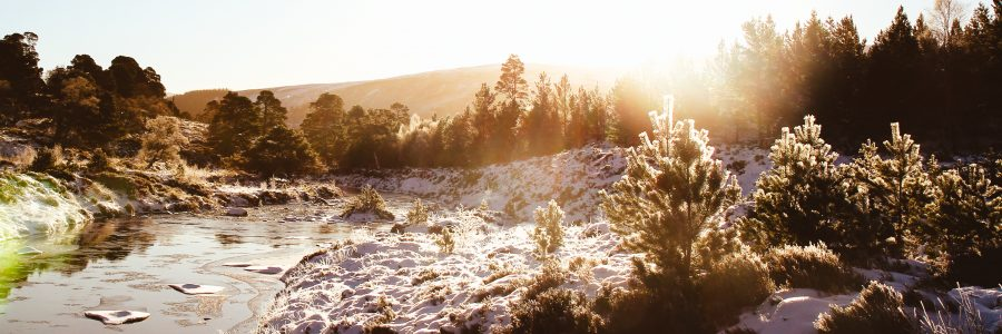 Christmassy Cairngorms – a training hike at Minus 14C